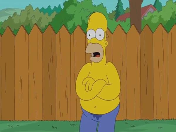 Homer Simpson - ALS Ice Bucket Challenge
