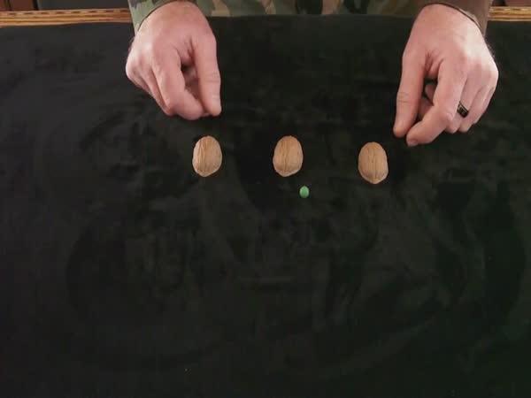 Borec - Hra se skořápkami