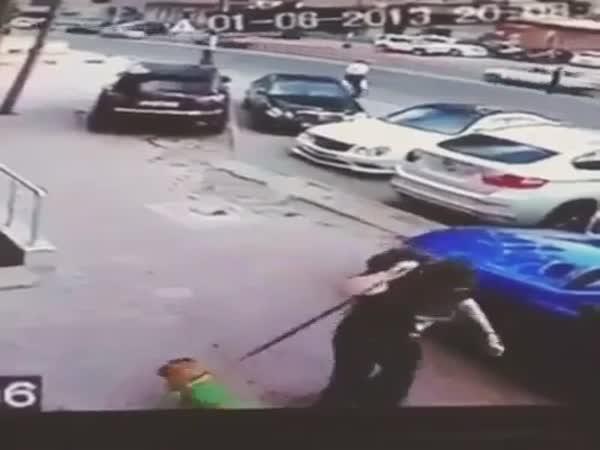 Agresivní kočka napadla psa