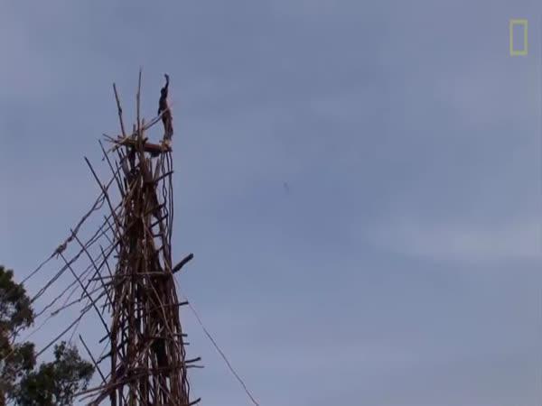 Šílený bungee jumping