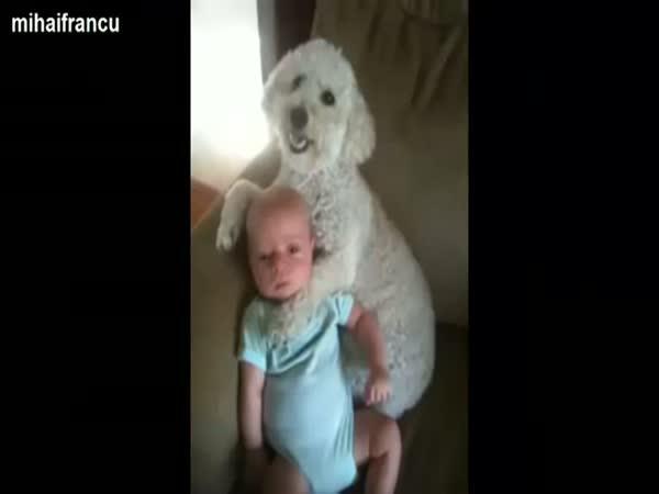 Psi a děti - kompilace plná lásky