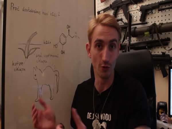 Vědecké kladivo - Husí kůže