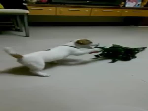 Hravé štěně vs. plastový drak