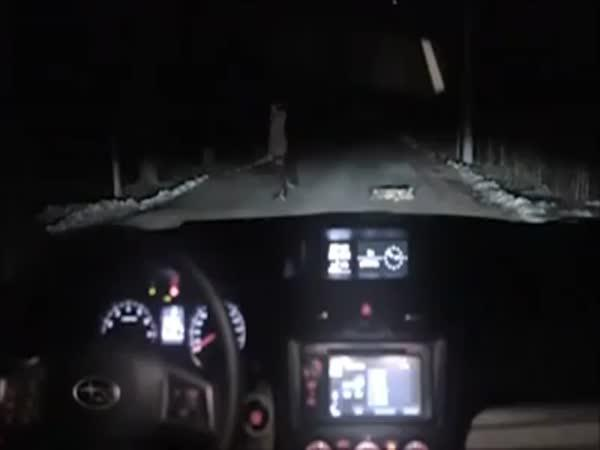 Jak se krade Subaru