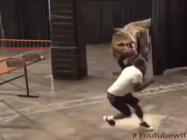 Napadení dinosaurem