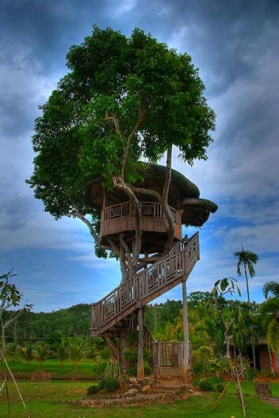 GALERIE - 23 kouzelných domků na stromech