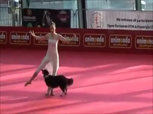 Tanec - Pes a panička