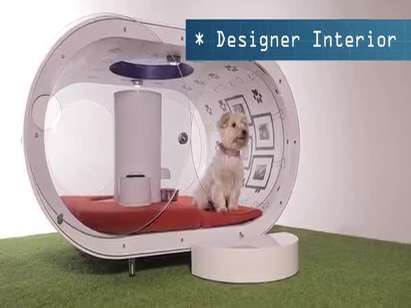 Psí boudy v budoucnosti