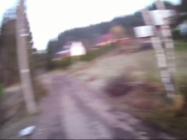 Česká republika - Záchrana srnky