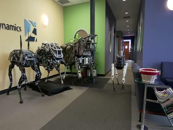 Čtyřnozí roboti Spot