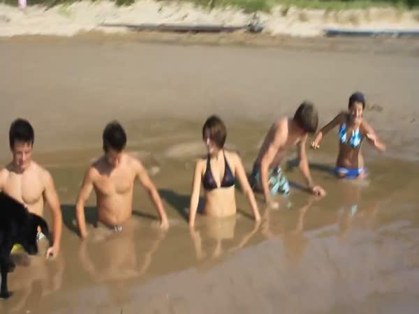 Pláž, nebo bažina?