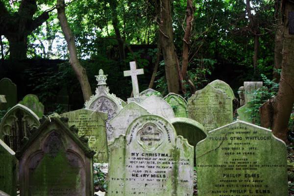 GALERIE - Stull prokletý hřbitov