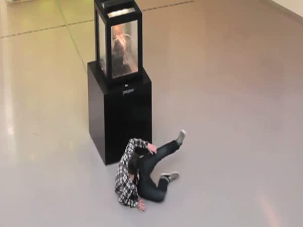 Nachytávka - Socha na výstavě