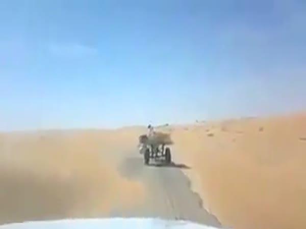 Nečekaný účastník silničního provozu