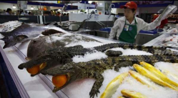 GALERIE - Čínské supermarkety