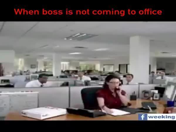 Když šéf nepřijde do práce