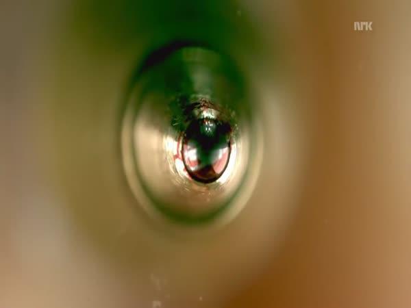 Mikroskopické záběry kuličkového pera