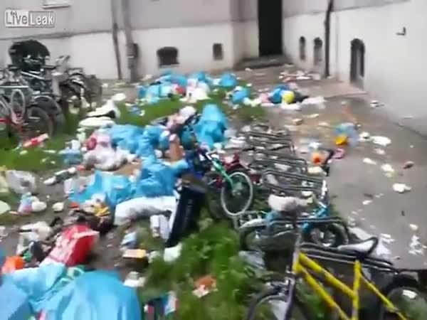 Takhle se chovají imigranti v Německu