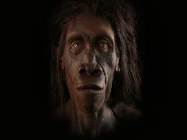 Evoluce lidí podle Darwina
