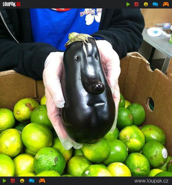 GALERIE - Žertovná zelenina