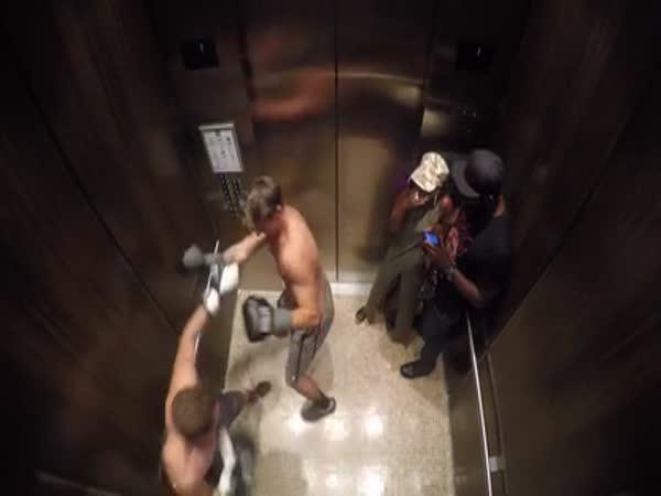 Nachytávka - Boxeři ve výtahu