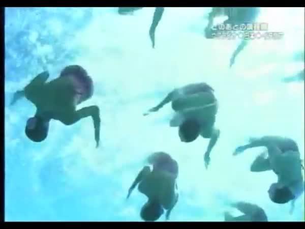 Synchronizované plavání - Led Zeppelin