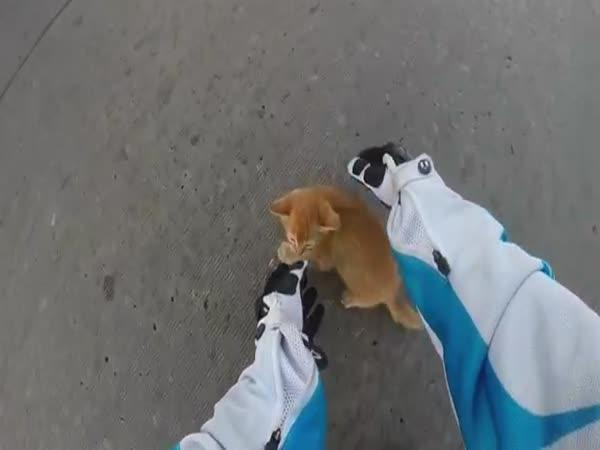 Motorkářka zachránila koťátko