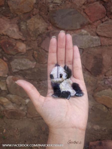GALERIE - 3D obrazy na dlaních