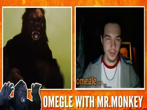 Gorila na Omegle!