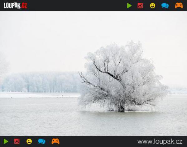 GALERIE - Pohádková zima