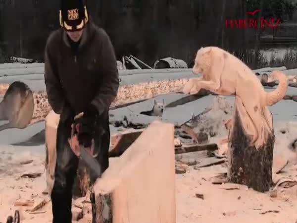 Tesání do dřeva