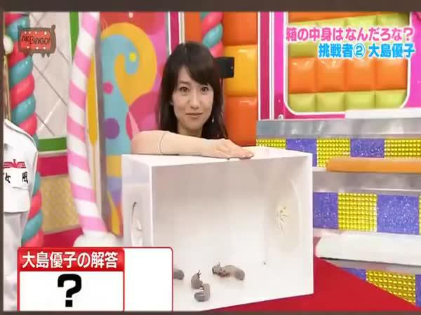 Japonská show - Co je v krabici?
