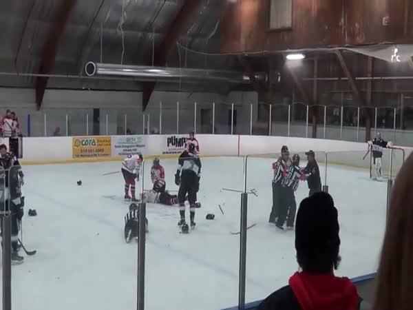 Do hokejové bitky se zapojil rozhodčí
