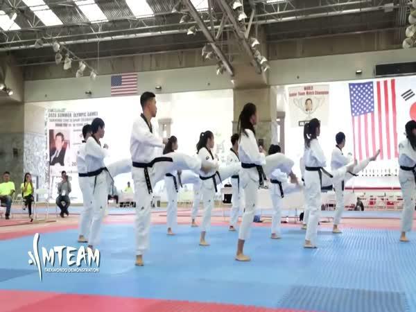 Nejlepší Taekwondo triky