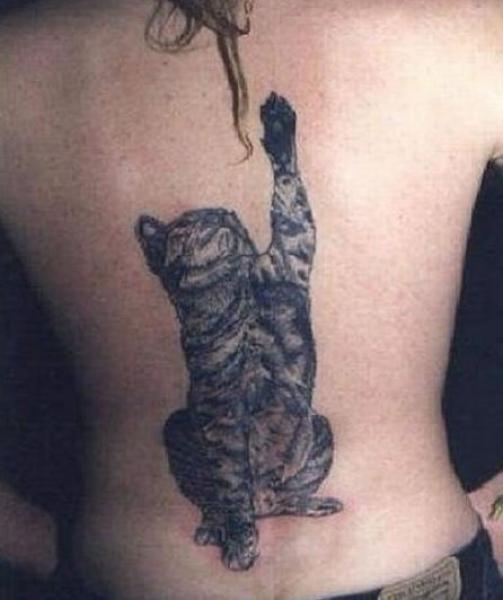 GALERIE - Kuriózní kočičí tetování