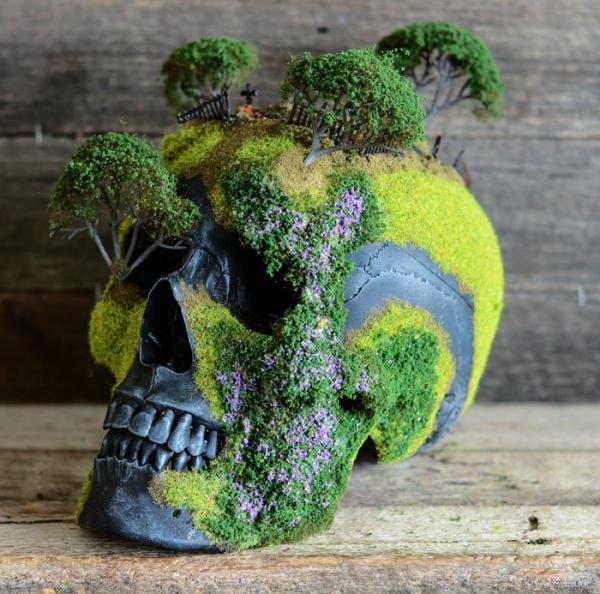 GALERIE - Unikátní bonsai na lebce
