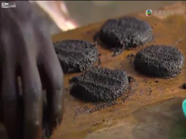 Africké hamburgery z komárů