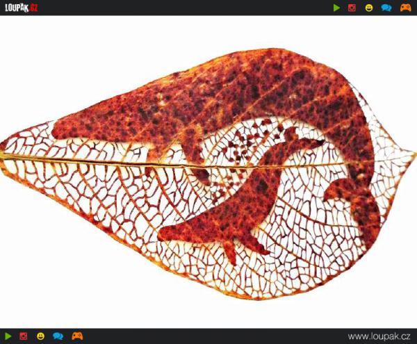 GALERIE - Umění z kousku listů