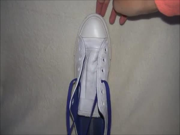Zavazování bot