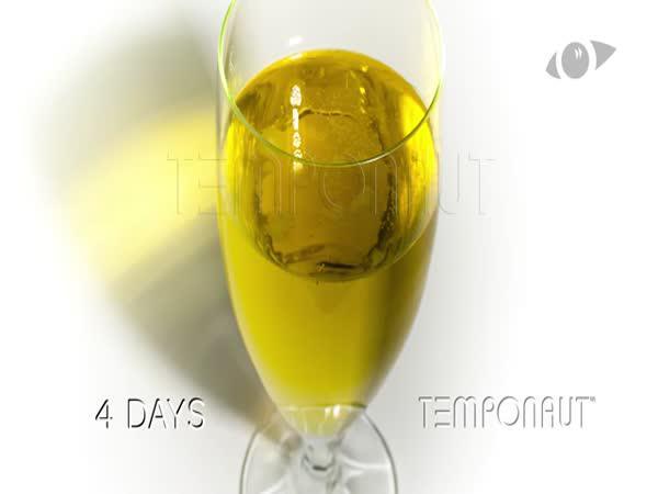 Co se stane s pivem ve sklenici za 60 dnů
