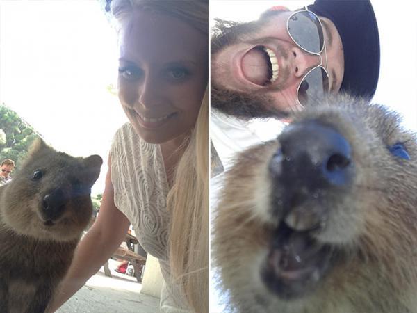 GALERIE - Nejlepší selfie s klokánkem
