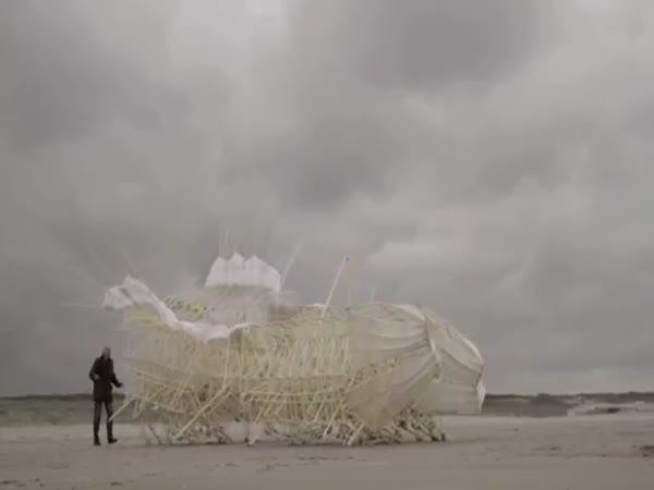Větrem poháněná monstra