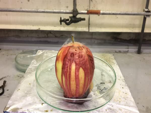 Kyselina versus jablko