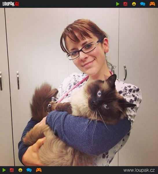 GALERIE - Výhoda práce veterináře 3