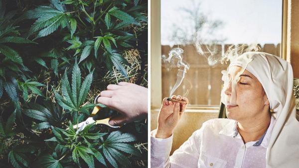 GALERIE - Jeptišky a marihuana!
