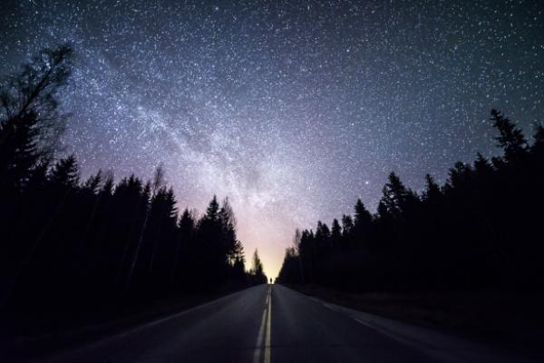 GALERIE - Proč milovat noc