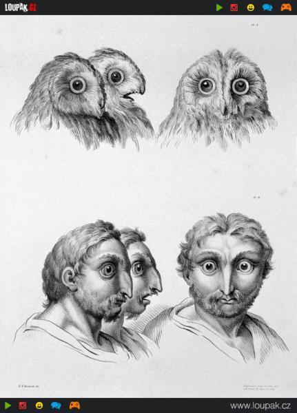 GALERIE - Lidé vyvinutí ze zvířat