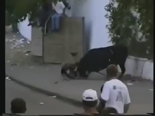 Španělská zábava - běh s býky