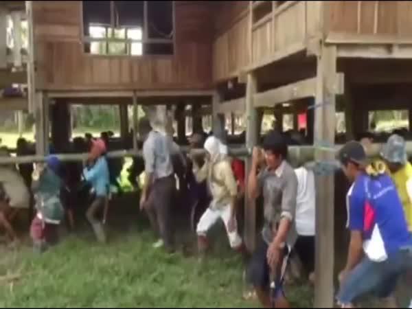 Jak se stěhuje v Malajsii