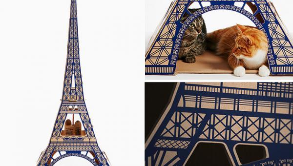 GALERIE - Kočičí domečky z kartonu